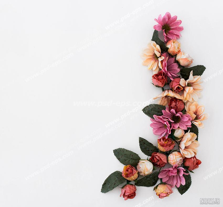 عکس گل حاشیه