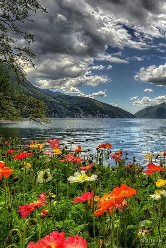 عکس طبیعت زیبا خاص