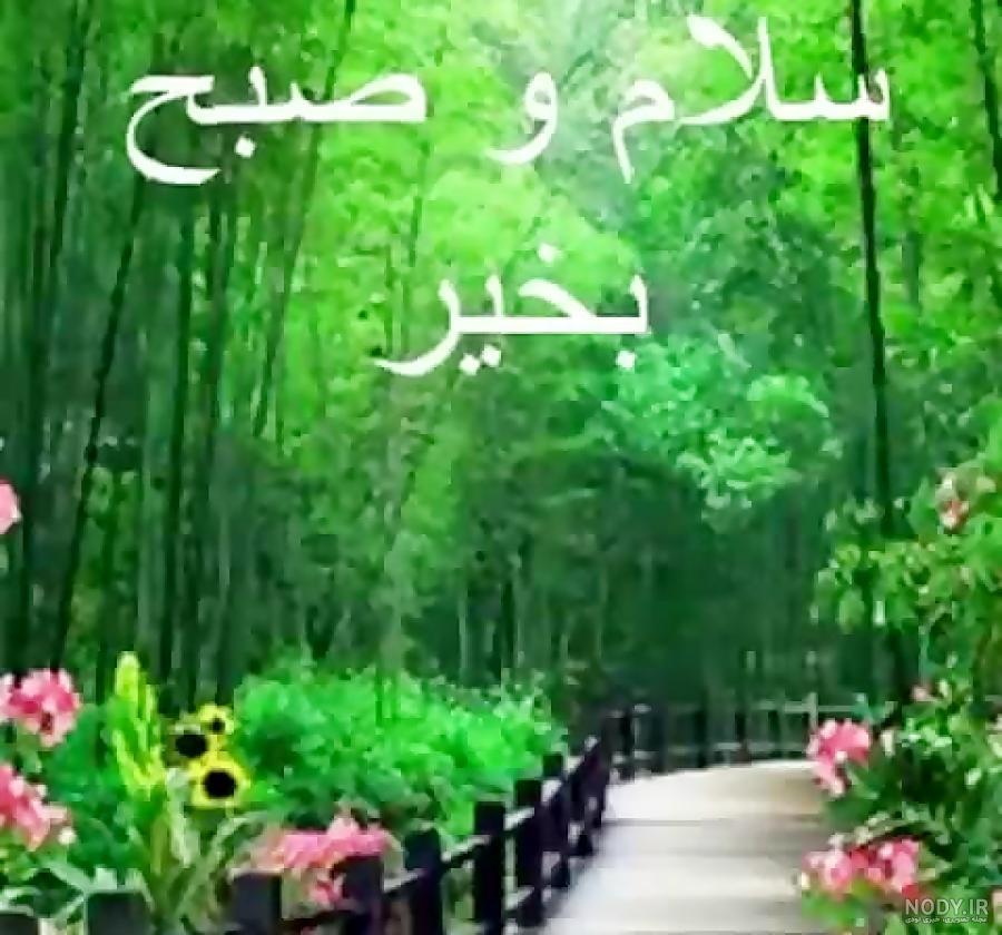 عکس صبح بخیر طبیعت