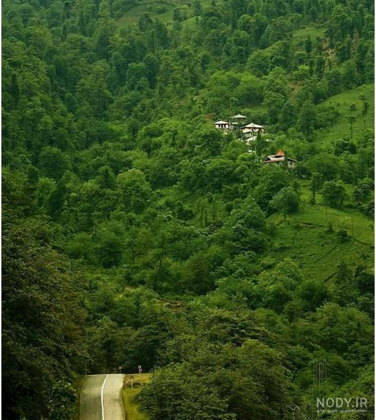 عکس از طبیعت زیبا گیلان