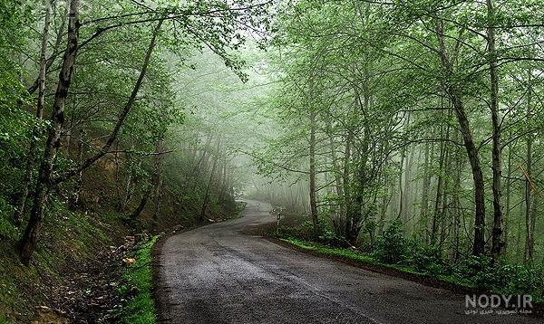 عکس های زیبای طبیعت گیلان