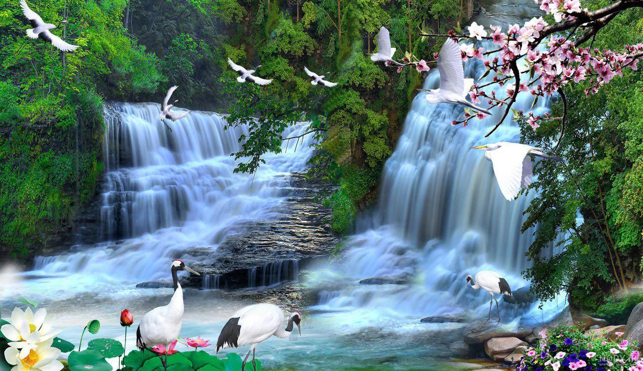 عکس های سه بعدی از طبیعت