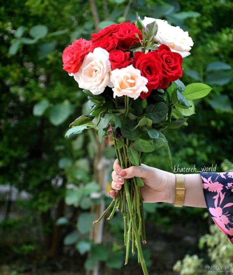 عکس پروفایل گل زیبا جدید