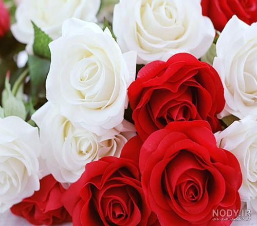 عکس گل متحرک زیبا جدید
