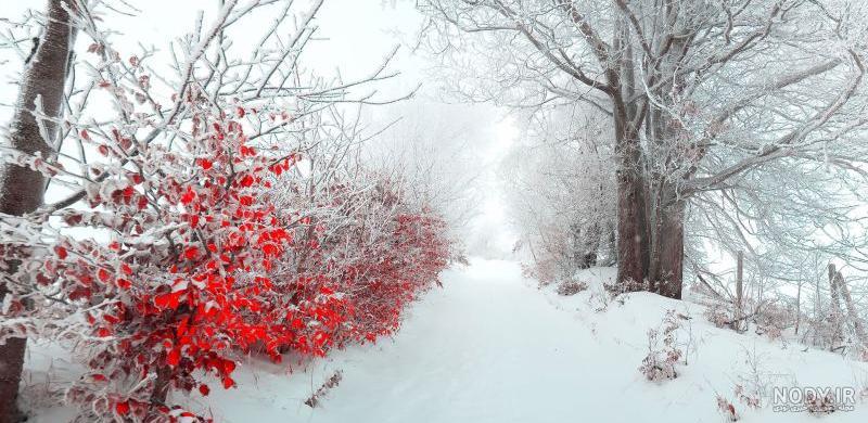 عکس منظره زیبا زمستانی