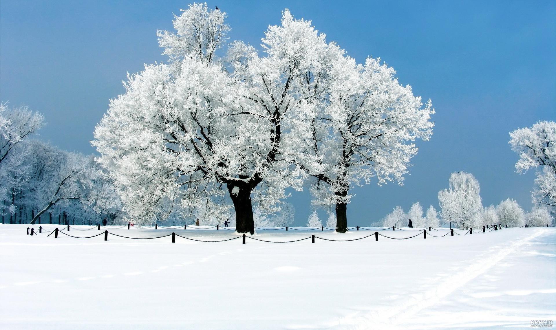 عکس صفحه گوشی زمستان