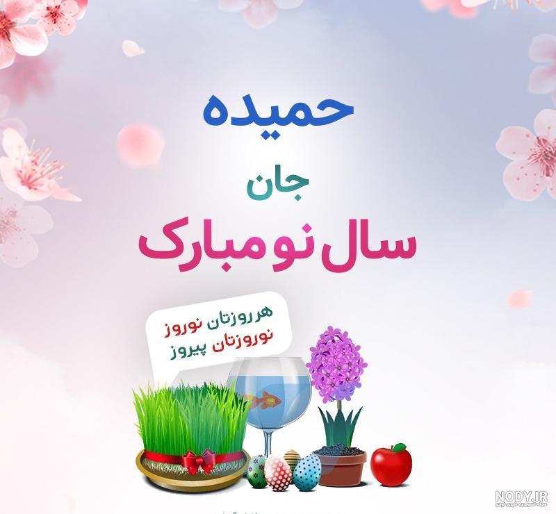 عکس حمیده نوروزی