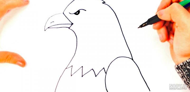 عکس نقاشی ساده عقاب