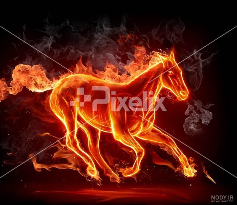 عکس اسب آتشی