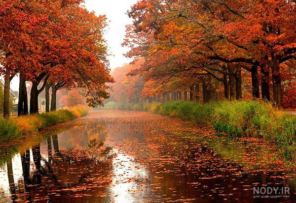 عکس از طبیعت پاییز برای پروفایل