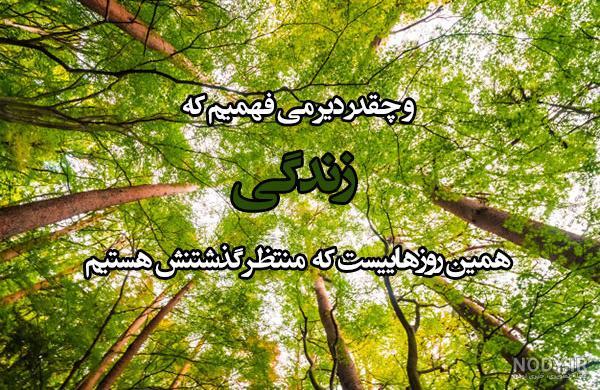 عکس طبیعت زیبا با نوشته