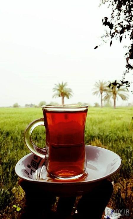 عکس پروفایل چای در طبیعت