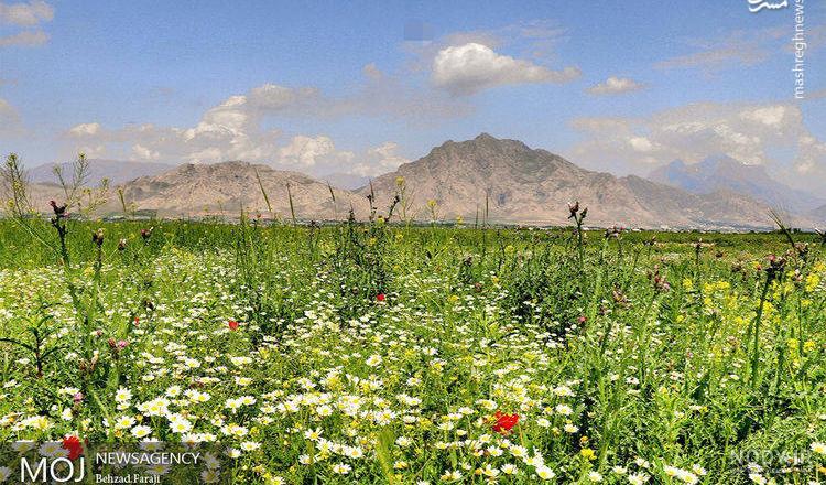 تصاویر زیبای طبیعت کرمانشاه