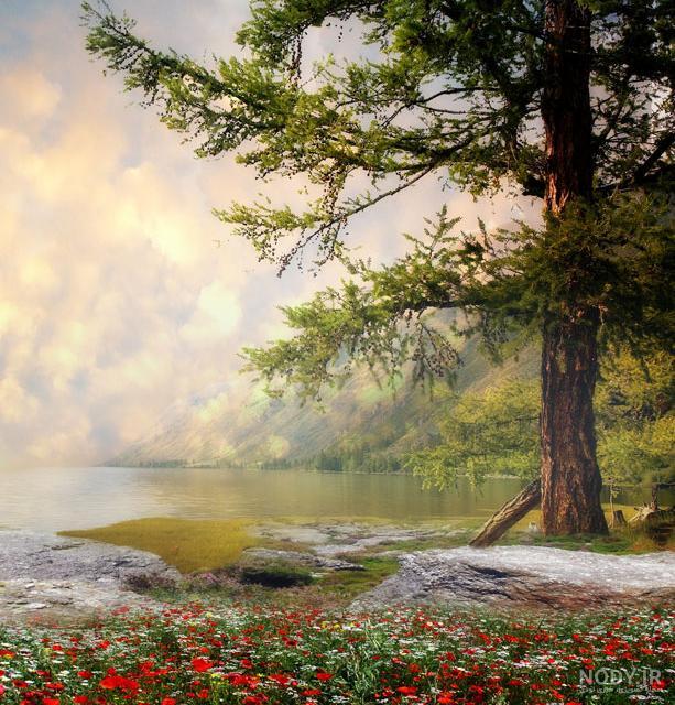 عکس از طبیعت خیلی زیبا