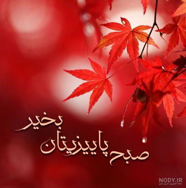 عکس سلام صبح بخیر پاییزی