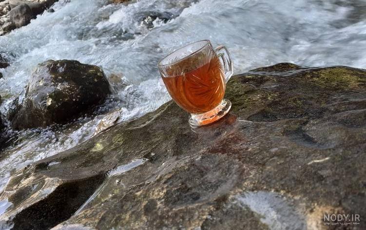عکس چای آتیشی در طبیعت