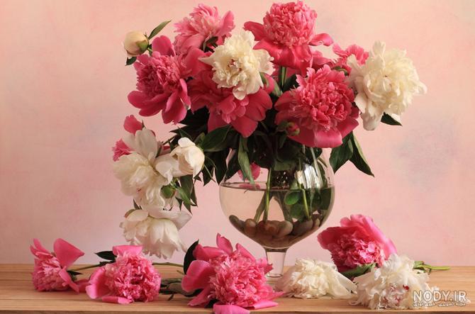 عکس گلهای زیبا در گلدان