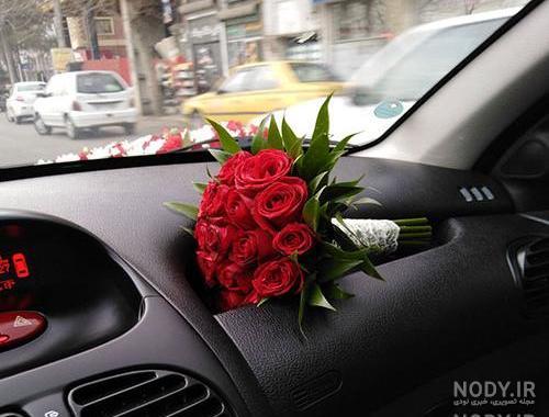 عکس گل رز جلو ماشین