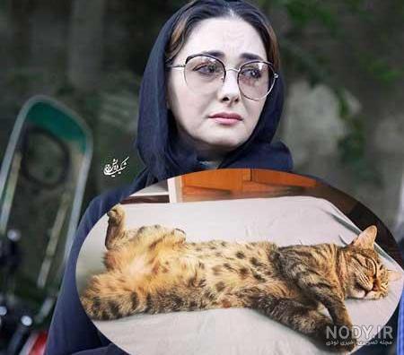عکس هانیه توسلی و گربه اش
