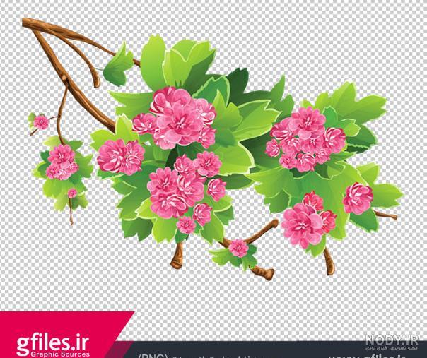 عکس شکوفه کارتونی