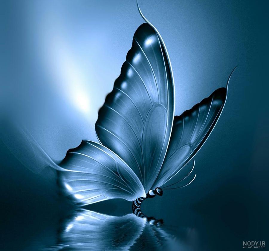 عکس پروانه جدید