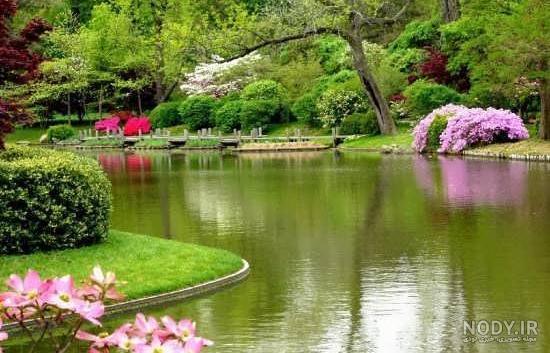 عکس مناظر زیبای طبیعت برای پروفایل