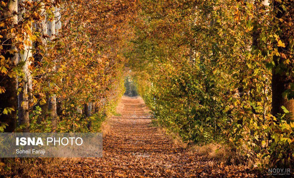 عکس پاییز طبیعت ایران